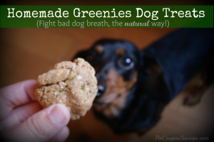 Make Greenies Dog Treats At Home