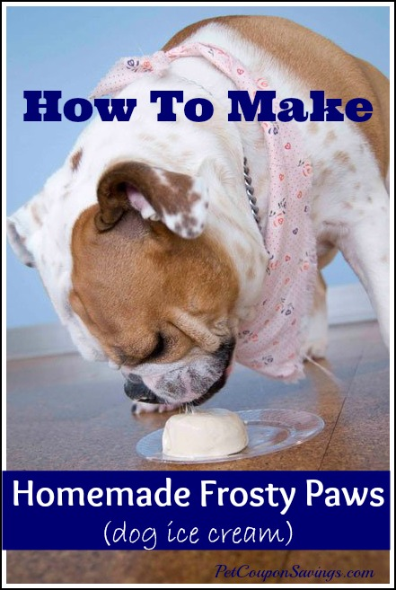homemade frosty paws