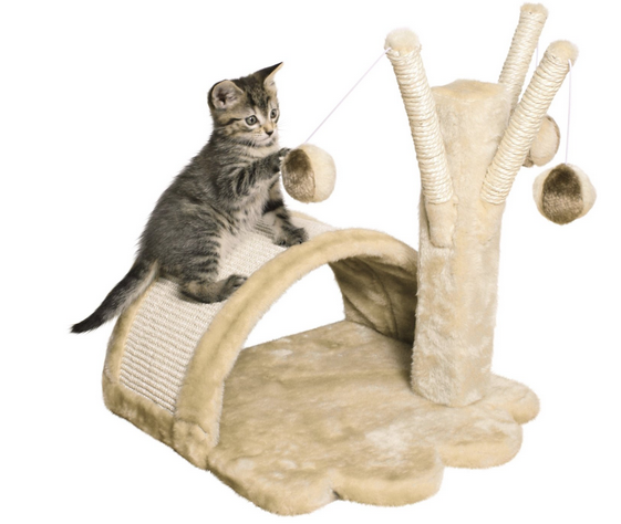 Discount Cat Supplies Free Shipping