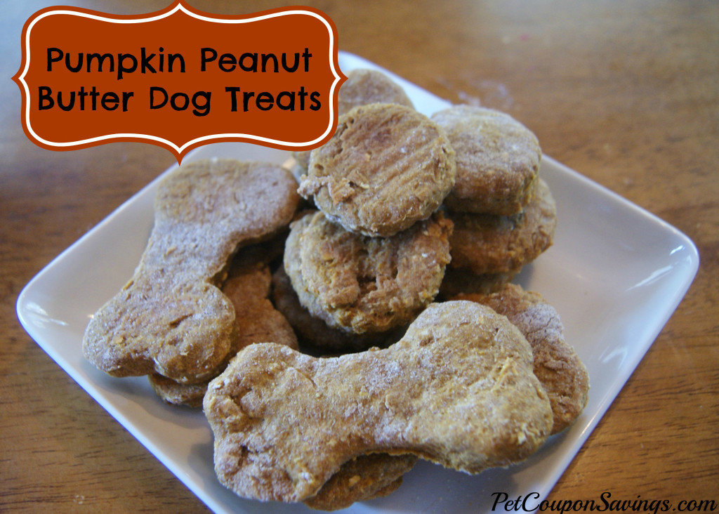 Homemade Pumpkin Peanut Butter Dog Treats