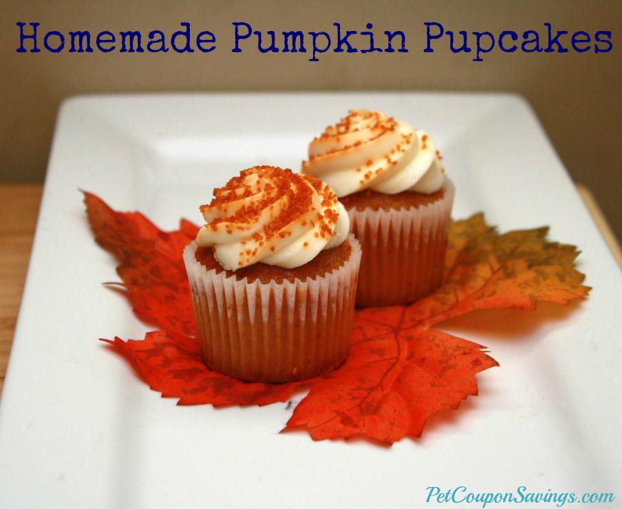 Homemade Pumpkin Pupcakes