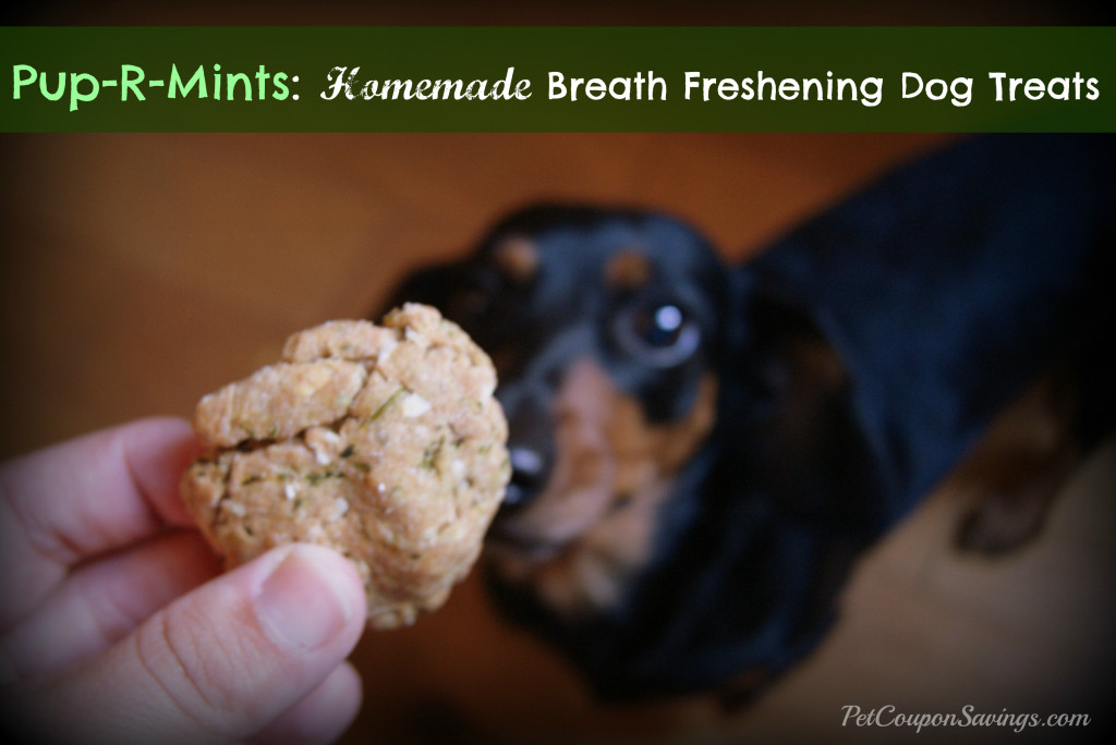 Pup-R-Mints Homemade Breath Freshening Dog Treats