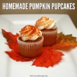 Homemade Pumpkin Pupcakes