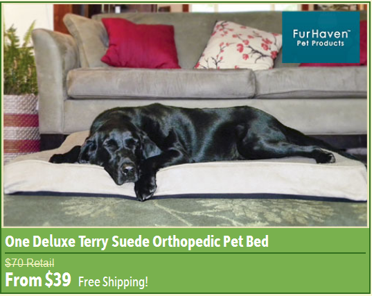 Fur Haven Deluxe Orthopedic Pet Bed