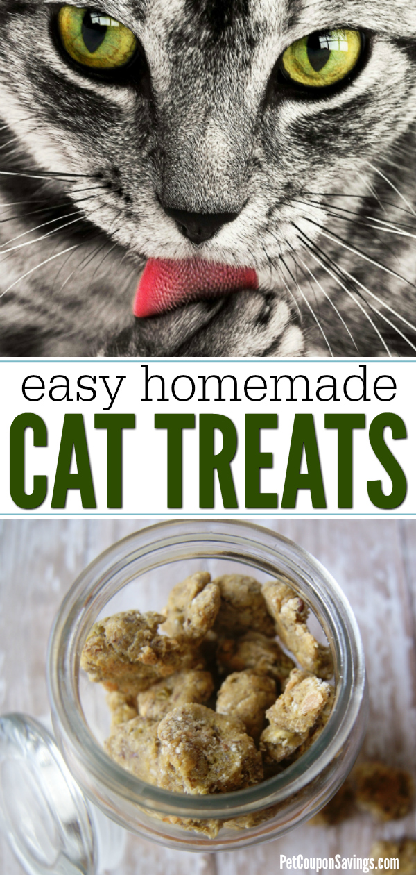 Homemade Tuna Cat Treats Easy High
