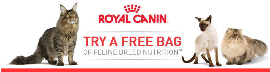 free bag royal canine cat food