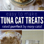 homemade tuna cat treats