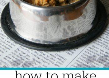 Turkey Meatball Dog Treats