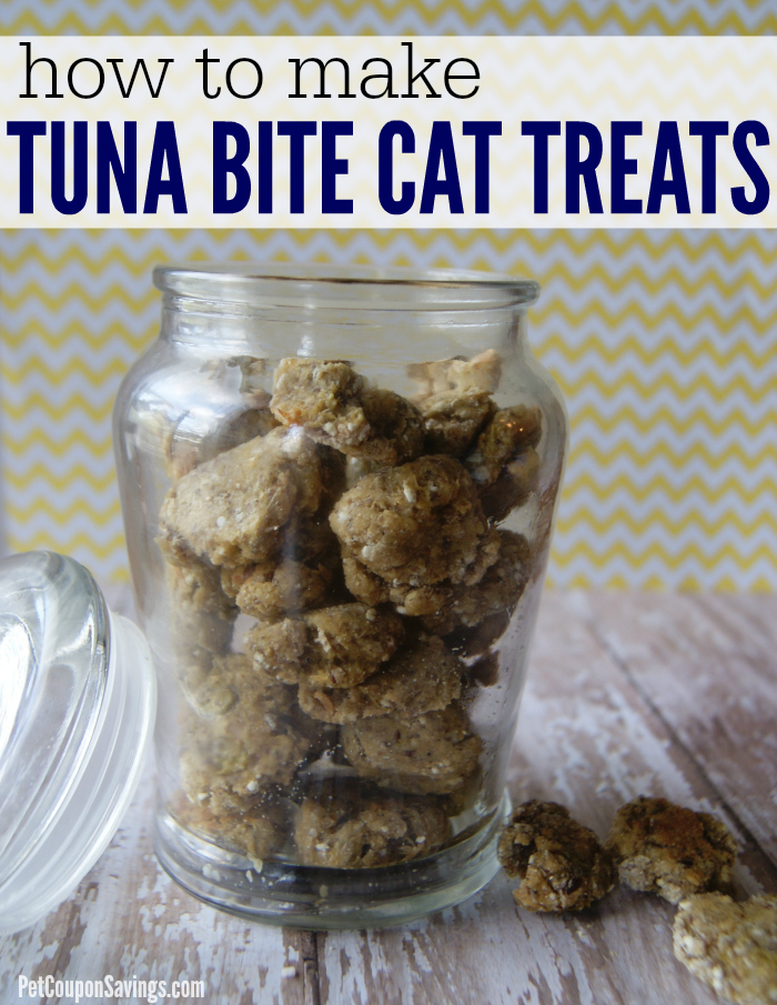 Homemade Tuna Cat Treats Easy High