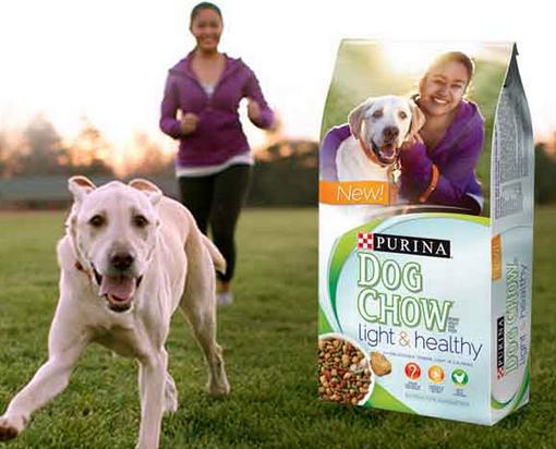 Purina Light and Healthy Dog Chow Coupon