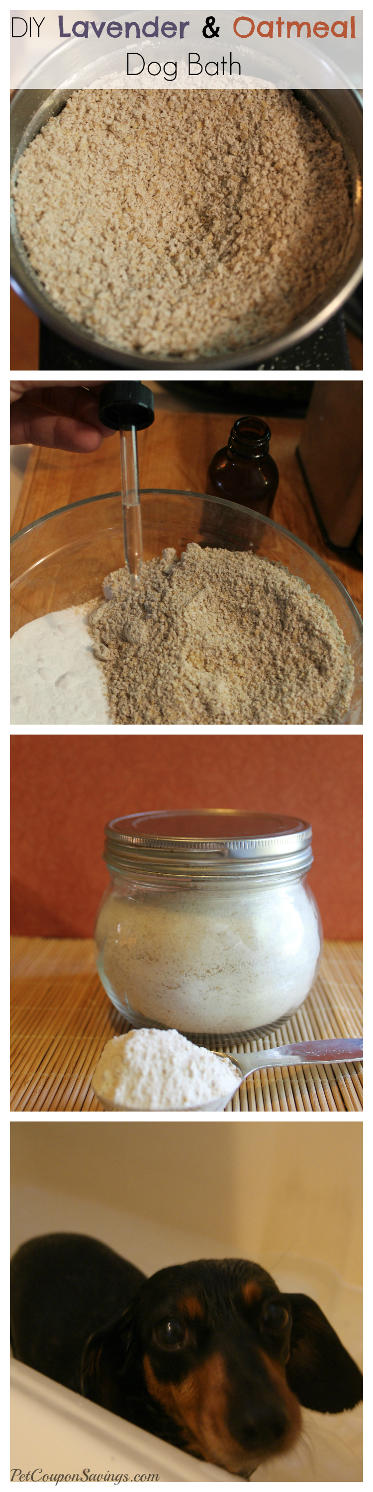 DIY Lavender and Oatmeal Dog Bath
