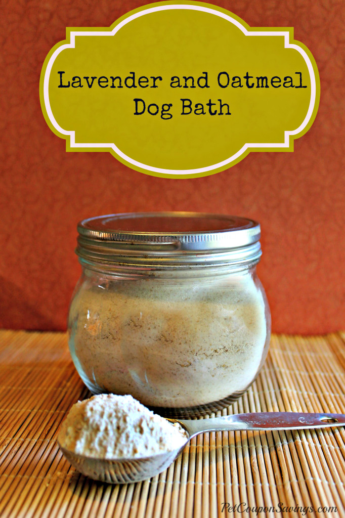 Homemade Lavender and Oatmeal Dog Bath