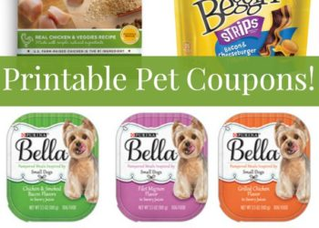 picture relating to Printable Pet Coupons named Puppy Coupon codes Archives - Dog Coupon Cost savings